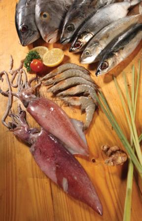 Seafood Segar DPP
